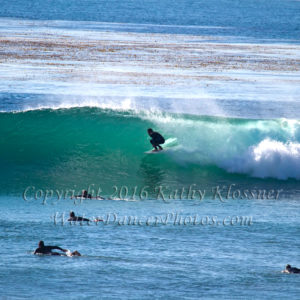 Surfing Images
